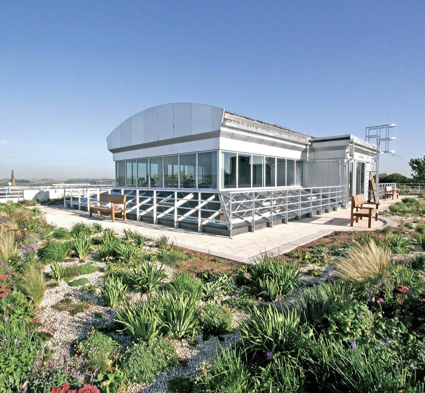 Moorgate-Crofts_roof-garden
