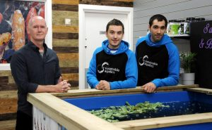 Aquatics expert takes the plunge with help from Launchpad